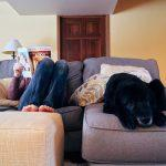 AC-maintenance-for-pet-owners